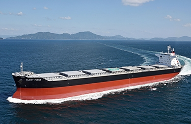Dry Bulk asset prices on the rising path